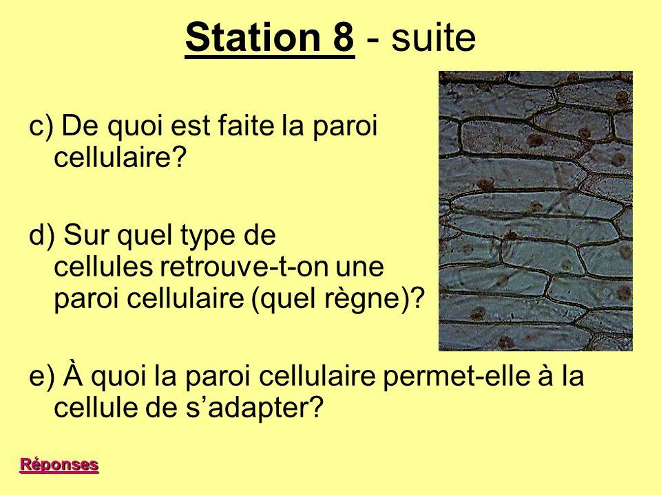 Station 8 - suite c) De quoi est faite la paroi cellulaire