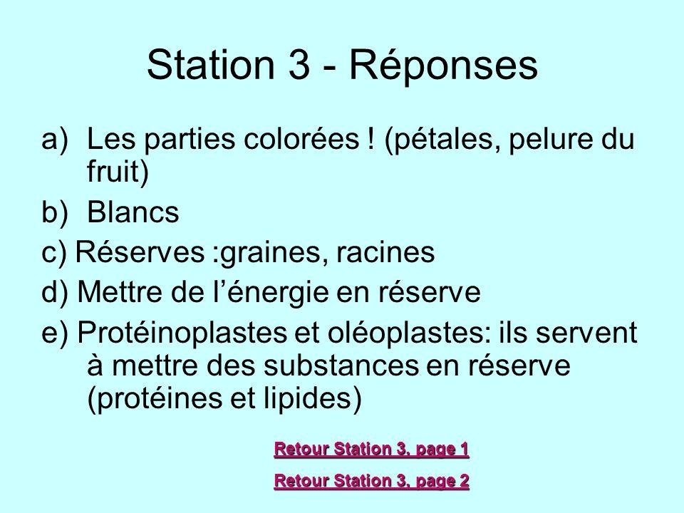 Station 3 - Réponses Les parties colorées ! (pétales, pelure du fruit)