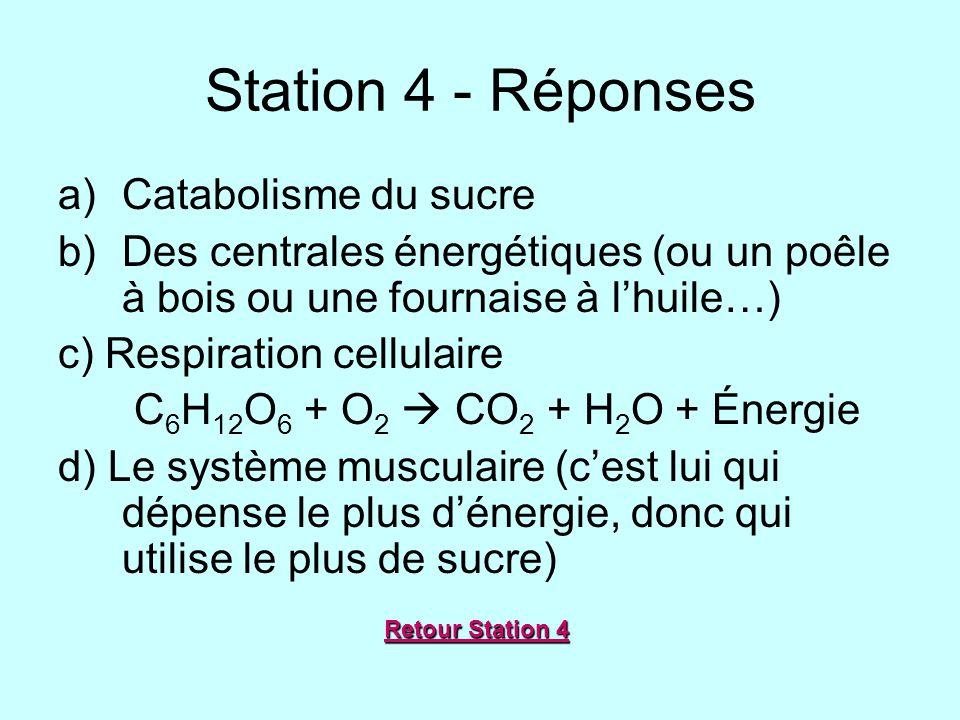 Station 4 - Réponses Catabolisme du sucre