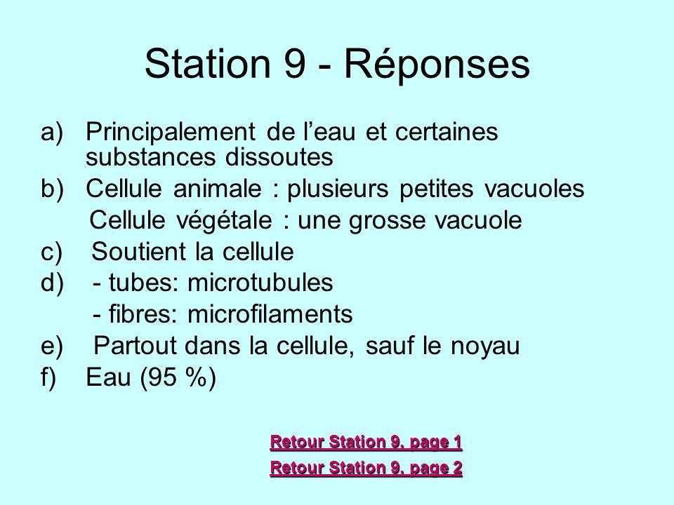 Station 9 - Réponses Principalement de l'eau et certaines substances dissoutes. Cellule animale : plusieurs petites vacuoles.