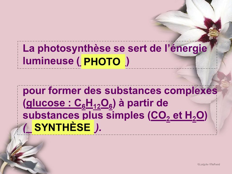 La photosynthèse se sert de l'énergie lumineuse (________)
