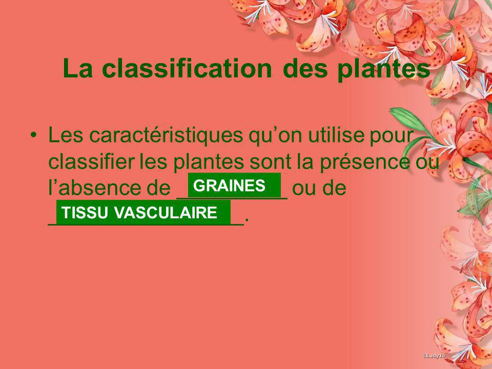 La classification des plantes