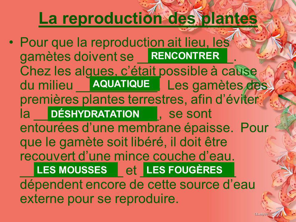 La reproduction des plantes