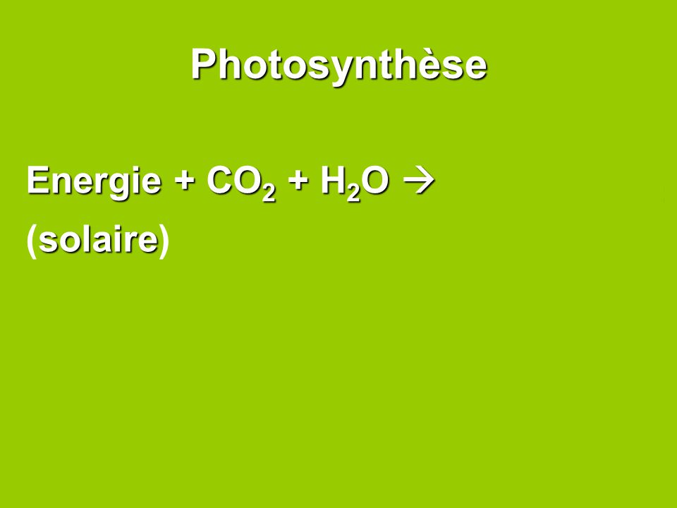Photosynthèse Energie + CO2 + H2O  C6H12O6+ O2 (solaire)