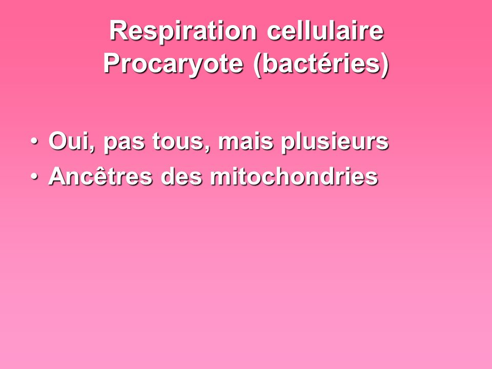 Respiration cellulaire Procaryote (bactéries)