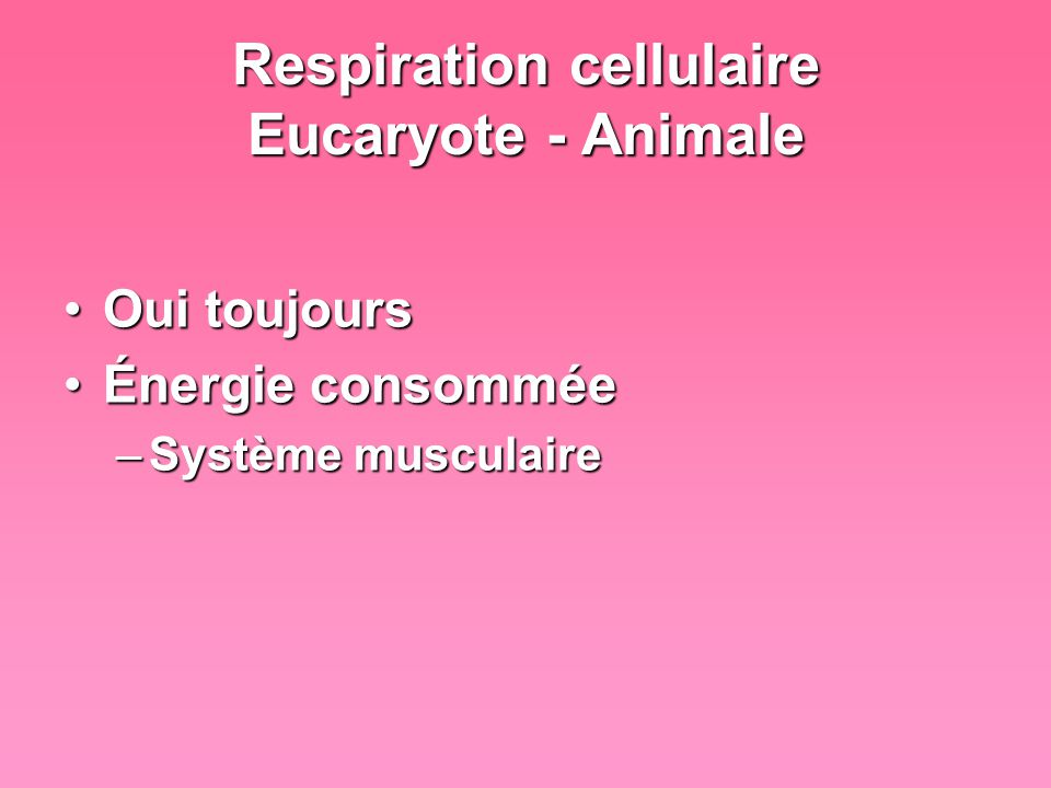 Respiration cellulaire Eucaryote - Animale