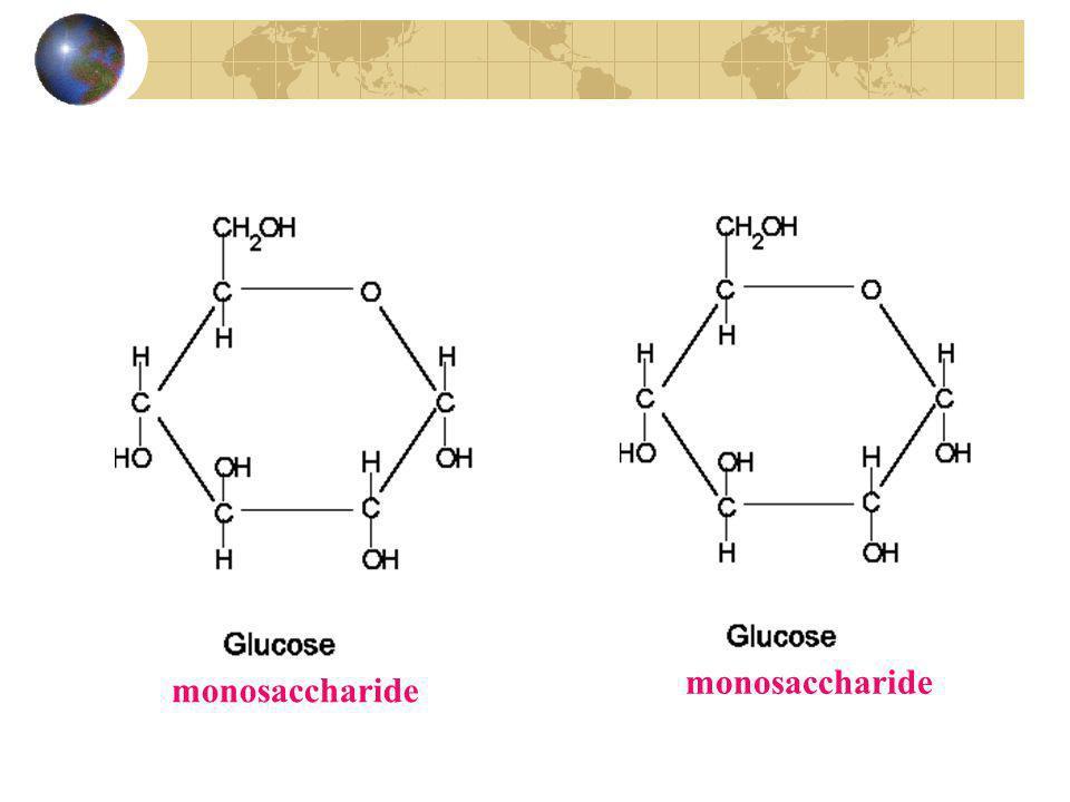 monosaccharide monosaccharide