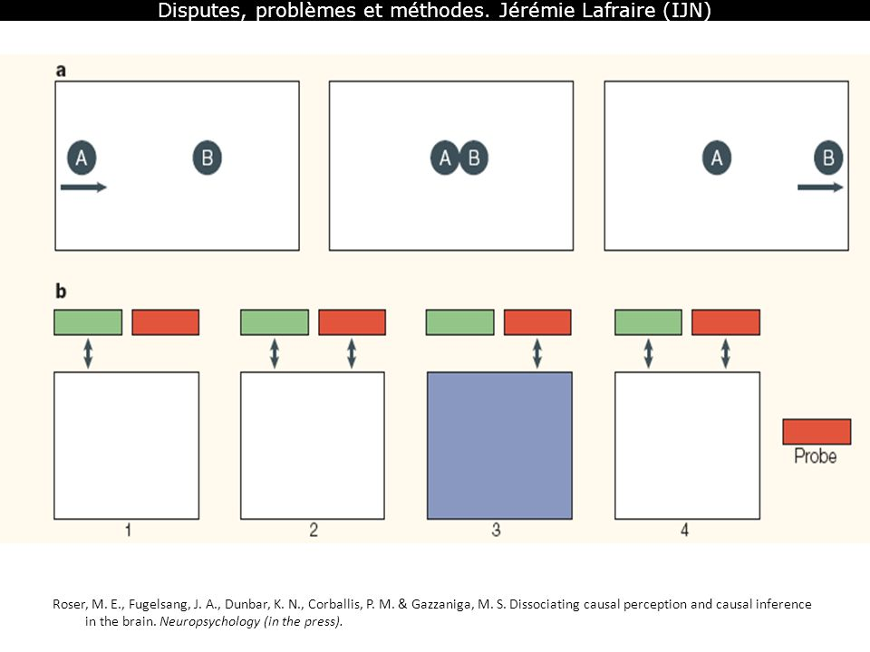 Disputes, problèmes et méthodes. Jérémie Lafraire (IJN)