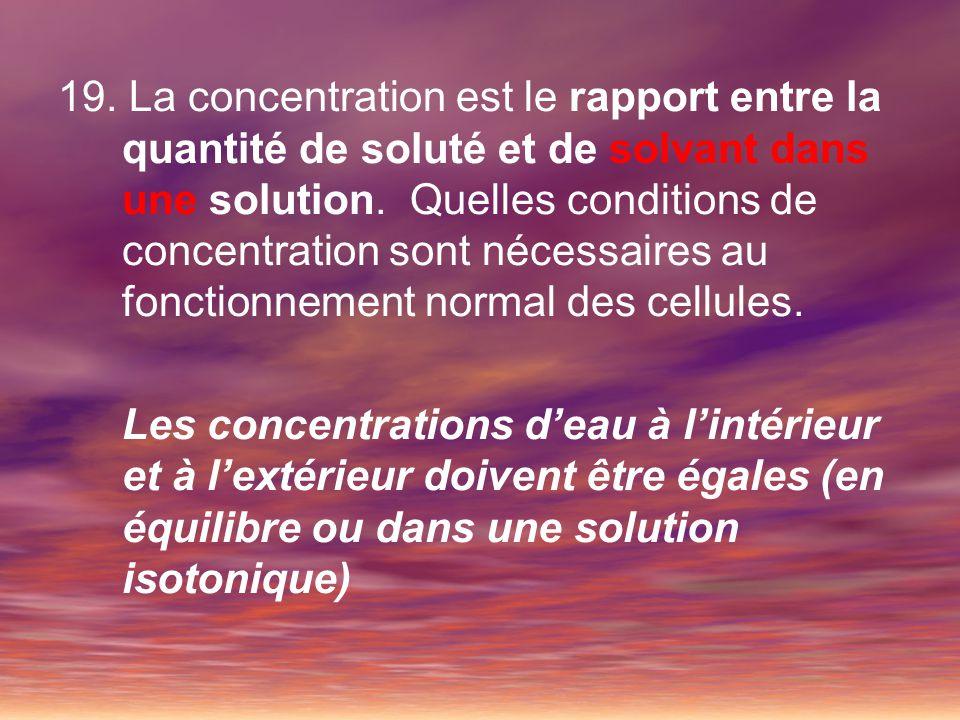 19. La concentration est le rapport entre la quantité de soluté et de solvant dans une solution. Quelles conditions de concentration sont nécessaires au fonctionnement normal des cellules.