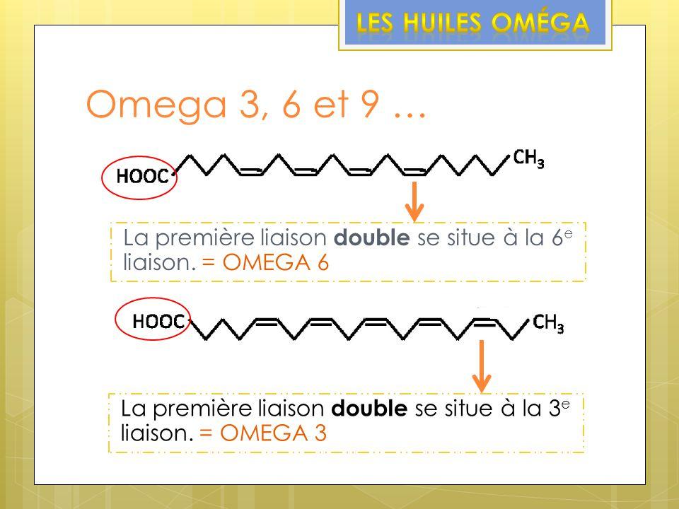 Omega 3, 6 et 9 … Les huiles Oméga