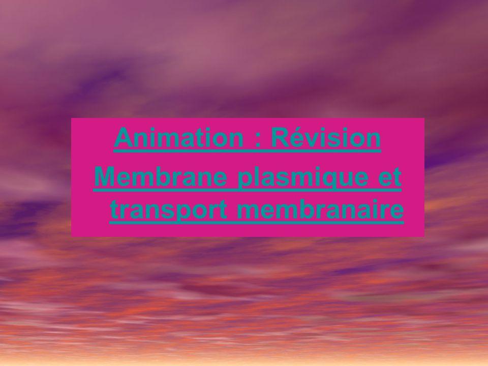 Membrane plasmique et transport membranaire