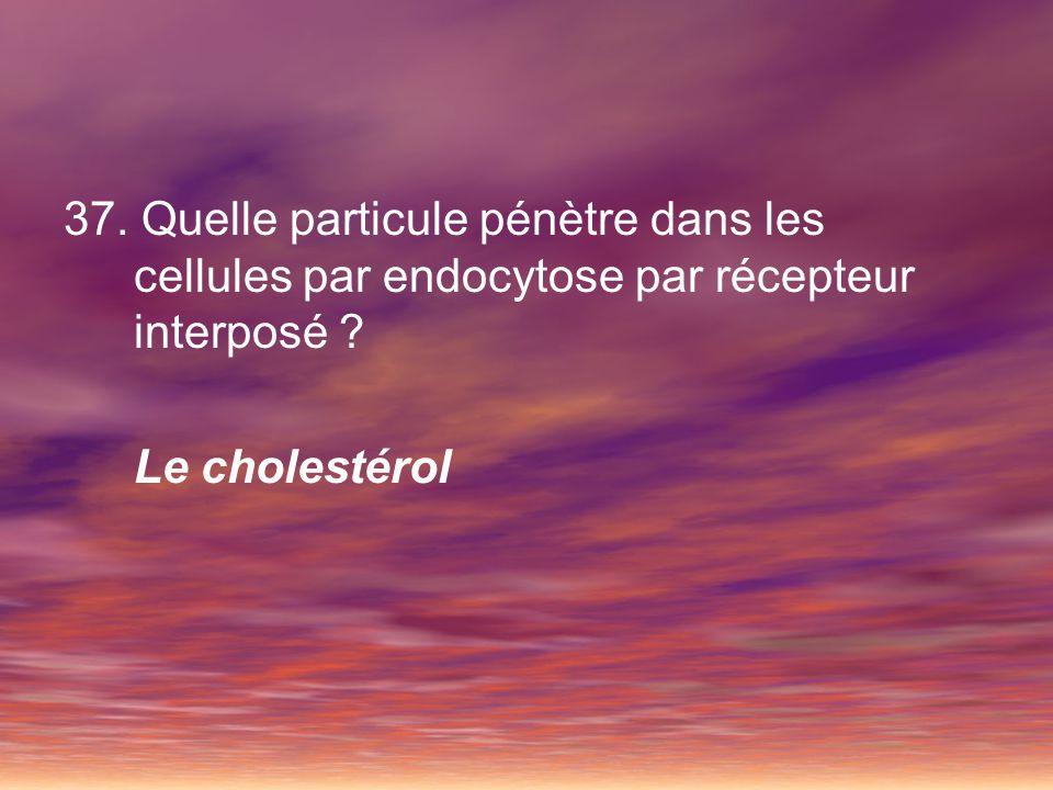 37. Quelle particule pénètre dans les cellules par endocytose par récepteur interposé