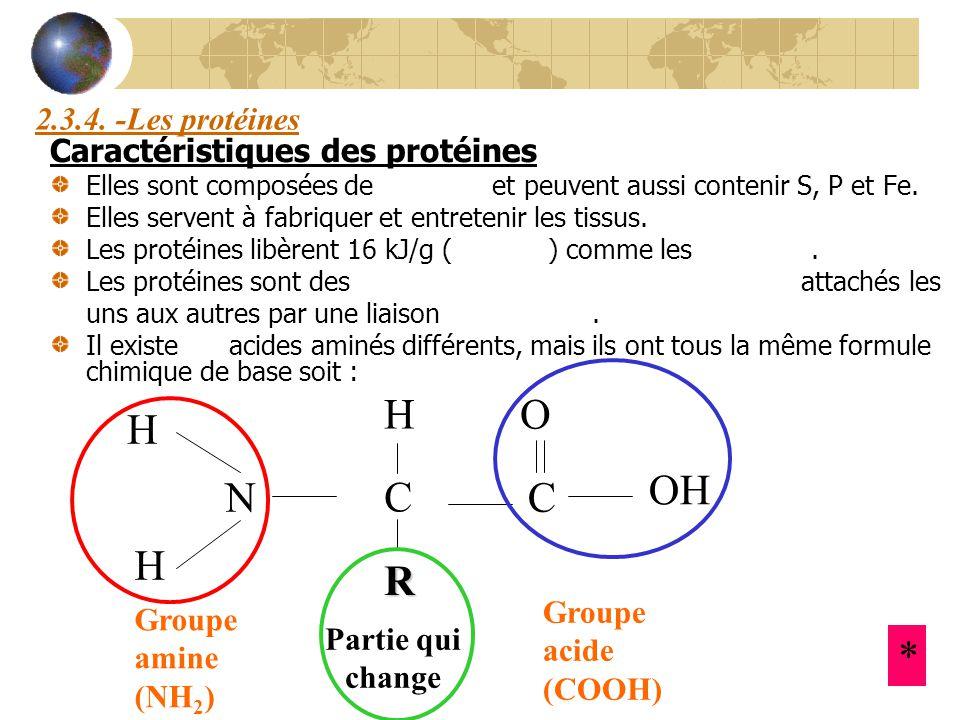 H O H OH N C C H R * 2.3.4. -Les protéines