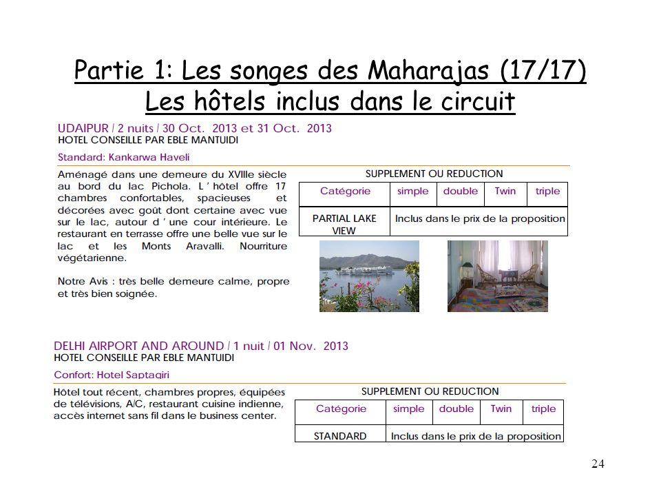 Partie 1: Les songes des Maharajas (17/17) Les hôtels inclus dans le circuit