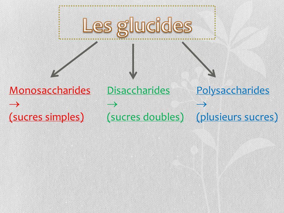 Les glucides Monosaccharides  (sucres simples) Disaccharides 