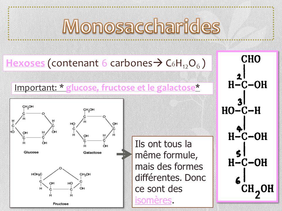 Monosaccharides Hexoses (contenant 6 carbones C6H12O6 )