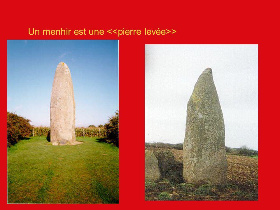 Un menhir est une <<pierre levée>>