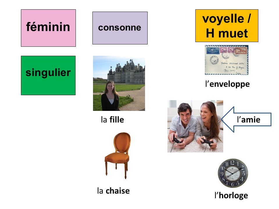 féminin voyelle / H muet