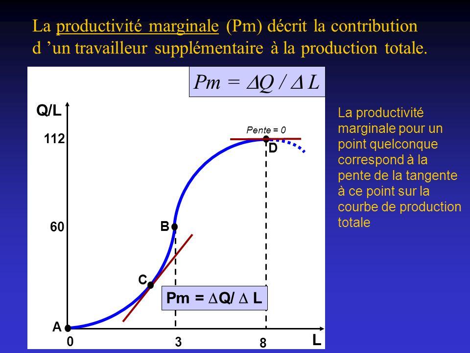 La productivité marginale (Pm) décrit la contribution d 'un travailleur supplémentaire à la production totale.