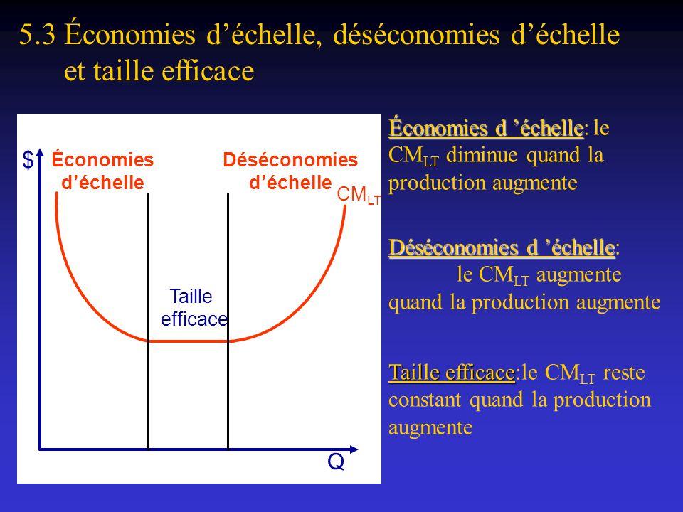 5.3 Économies d'échelle, déséconomies d'échelle et taille efficace