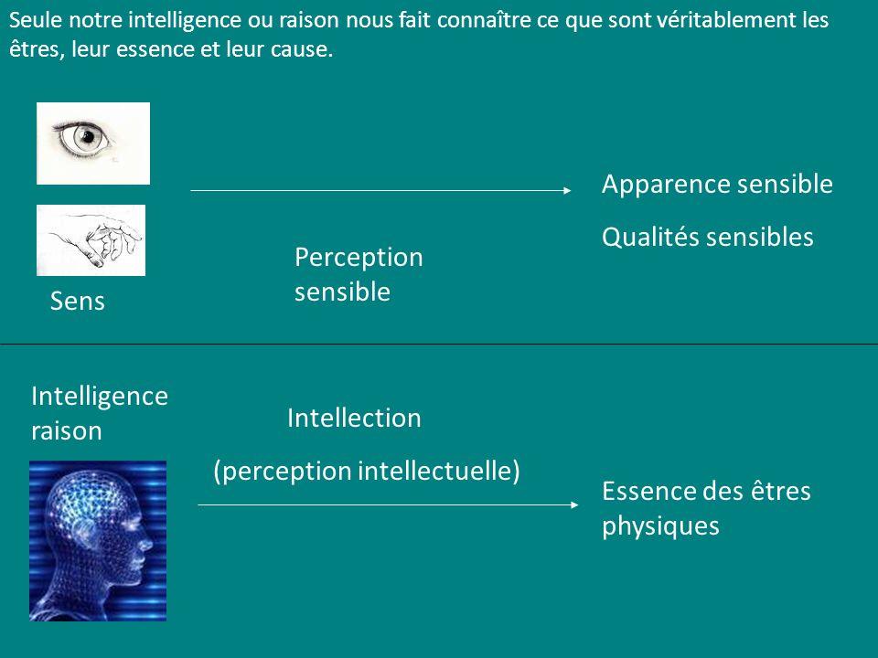 (perception intellectuelle)