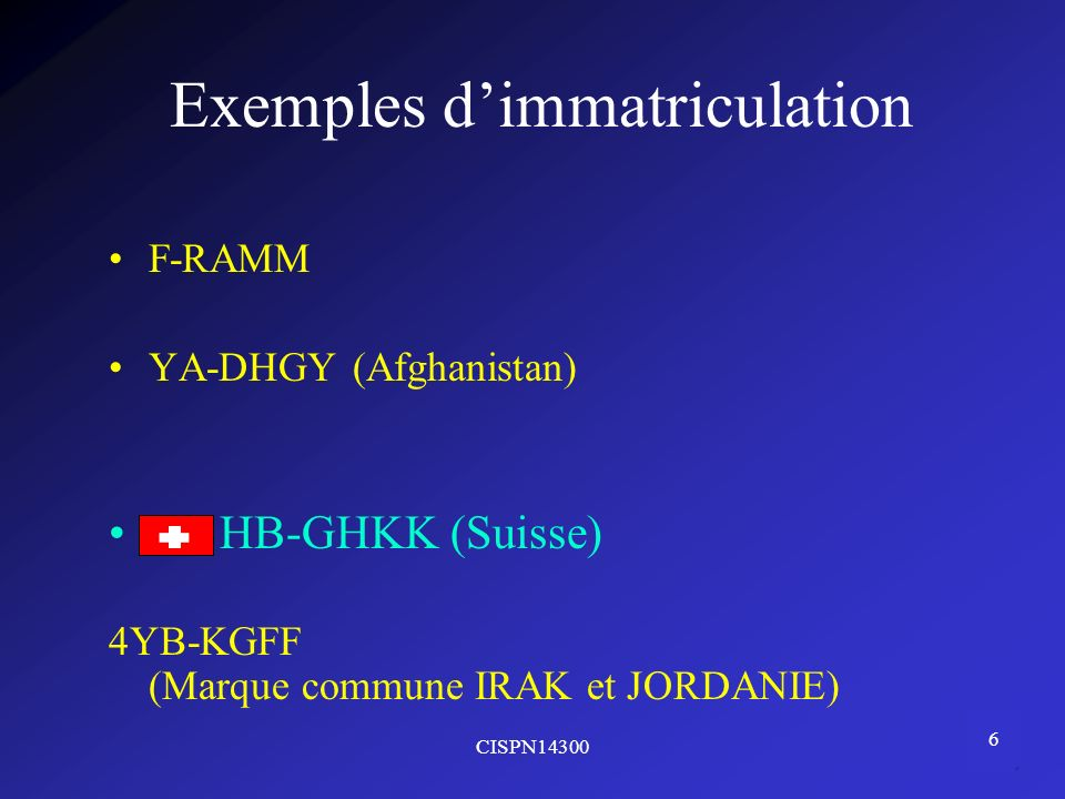 Exemples d'immatriculation
