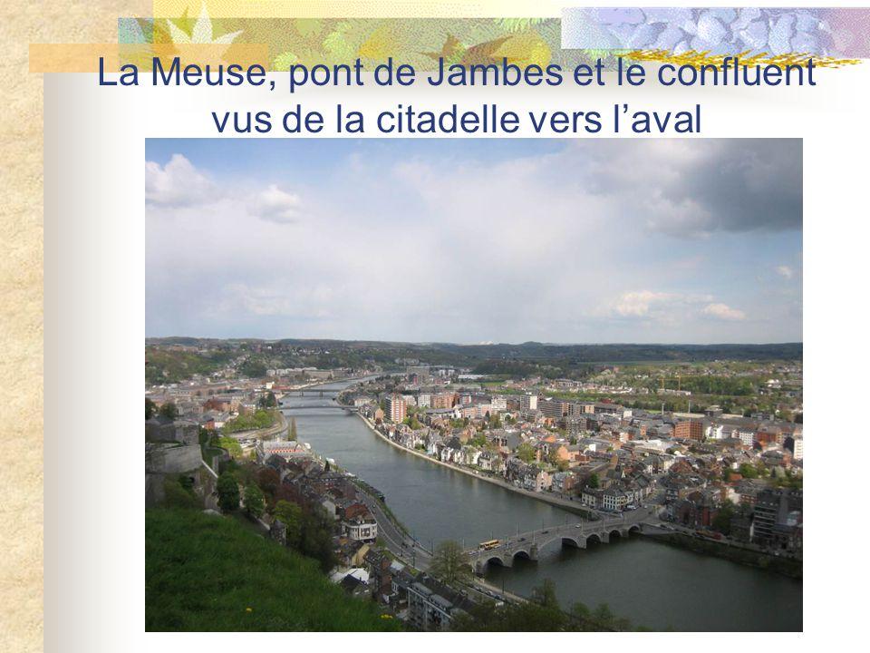 La Meuse, pont de Jambes et le confluent vus de la citadelle vers l'aval