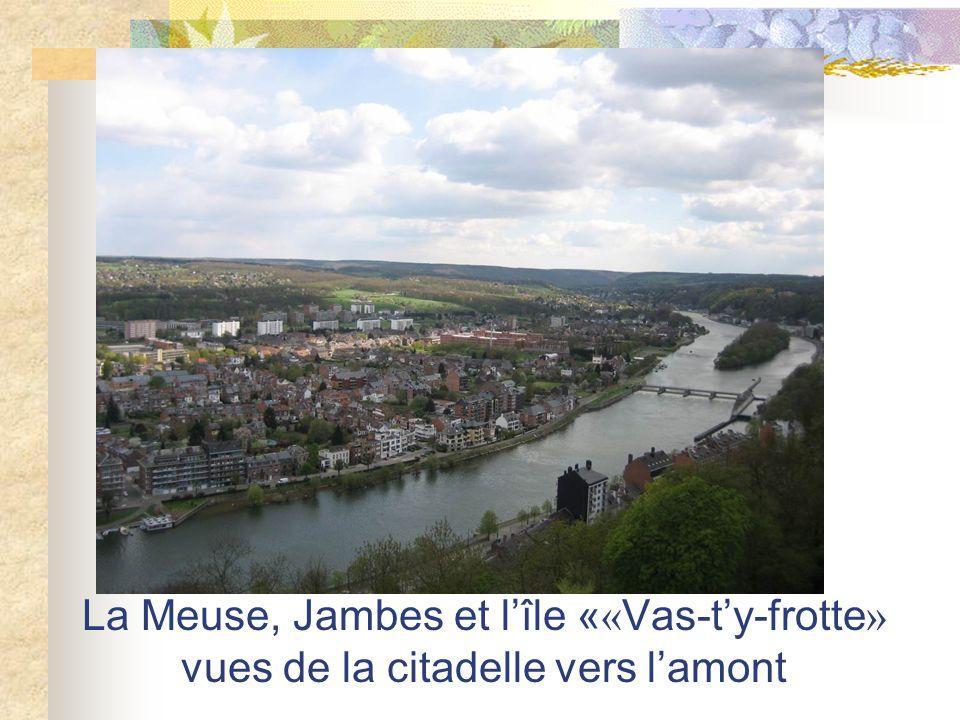 La Meuse, Jambes et l'île ««Vas-t'y-frotte» vues de la citadelle vers l'amont