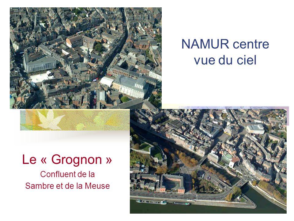 Le « Grognon » Confluent de la Sambre et de la Meuse