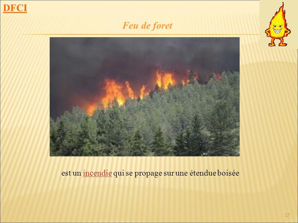 est un incendie qui se propage sur une étendue boisée