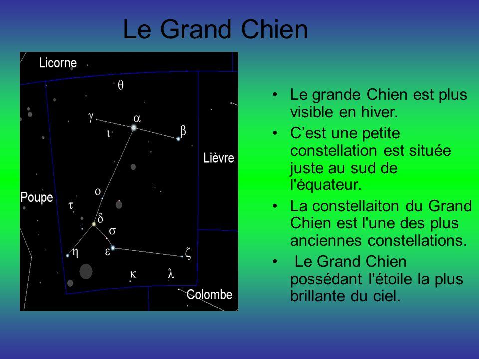 Le Grand Chien Le grande Chien est plus visible en hiver.