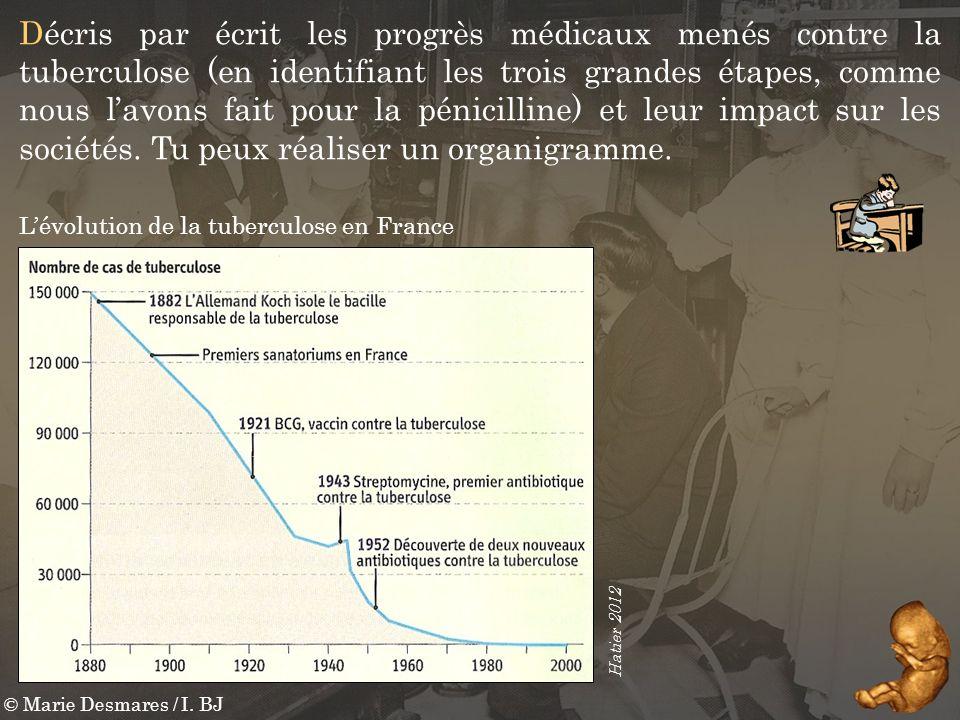 Décris par écrit les progrès médicaux menés contre la tuberculose (en identifiant les trois grandes étapes, comme nous l'avons fait pour la pénicilline) et leur impact sur les sociétés. Tu peux réaliser un organigramme.