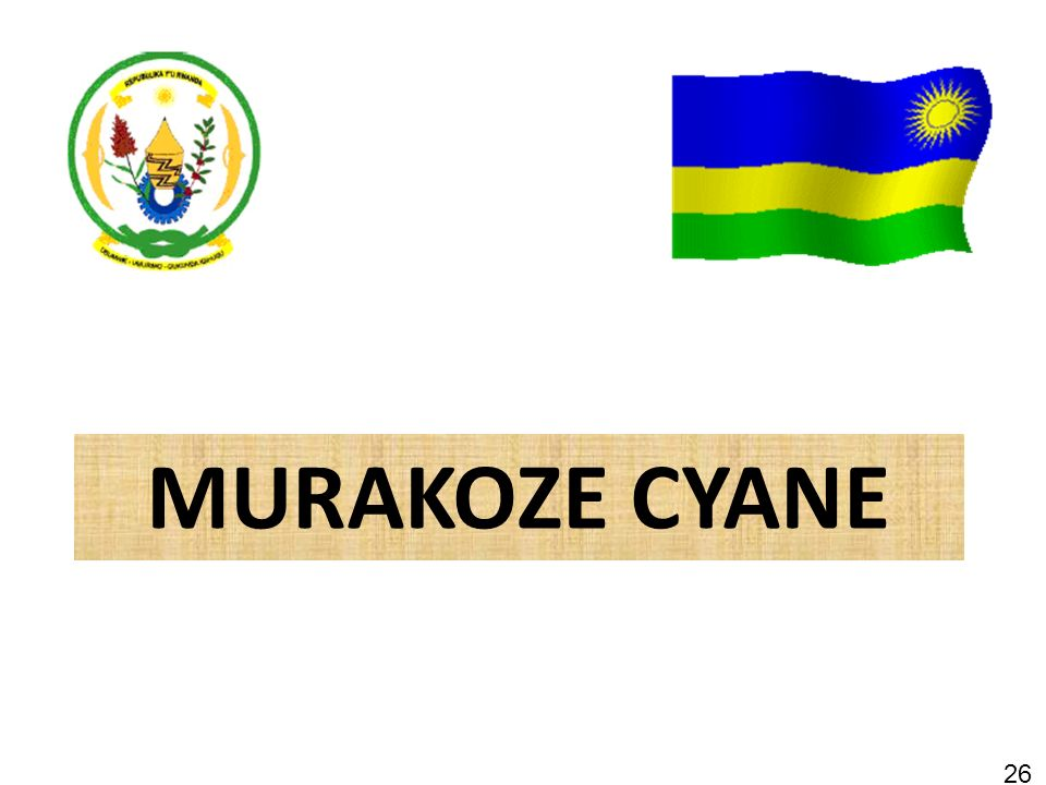 MURAKOZE CYANE 26 26