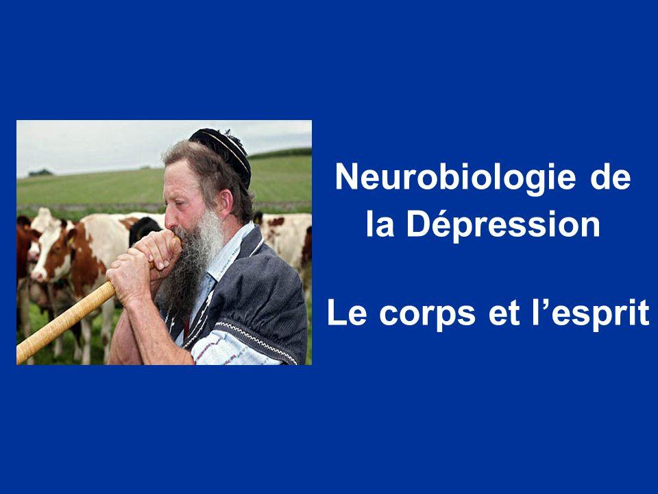 Neurobiologie de la Dépression Le corps et l'esprit