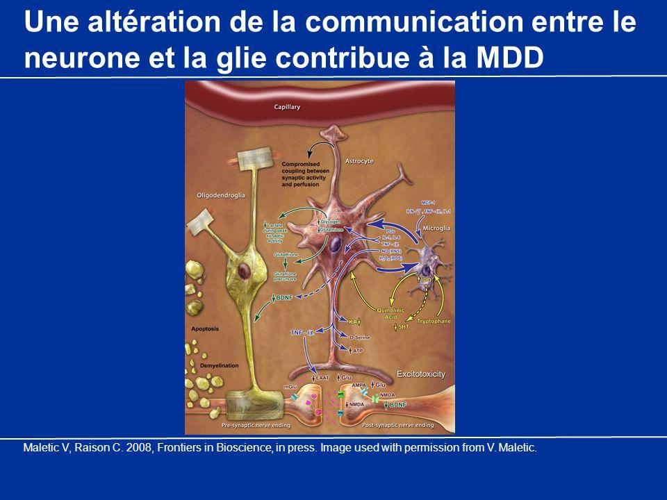 Une altération de la communication entre le neurone et la glie contribue à la MDD