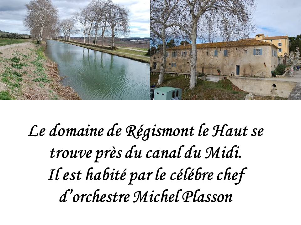 Le domaine de Régismont le Haut se trouve près du canal du Midi