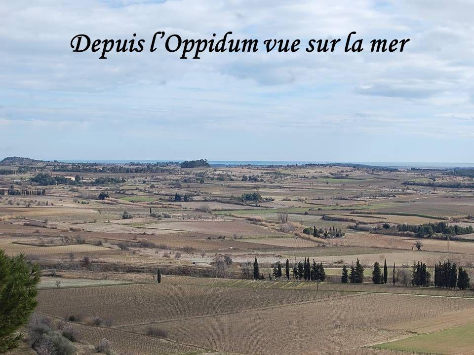 Depuis l'Oppidum vue sur la mer