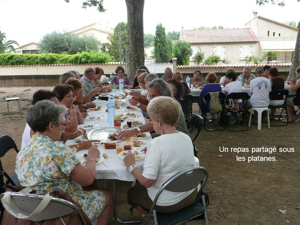 Un repas partagé sous les platanes.
