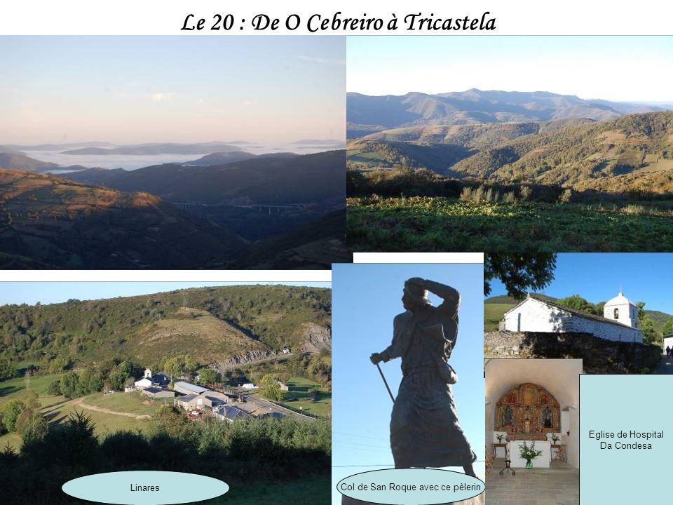 Le 20 : De O Cebreiro à Tricastela