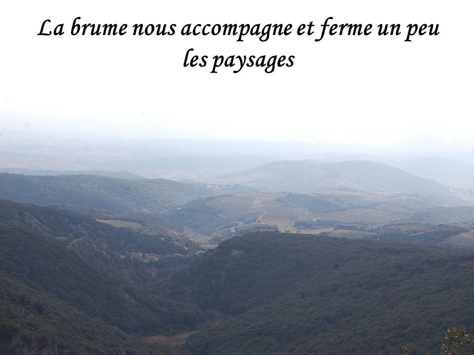 La brume nous accompagne et ferme un peu les paysages