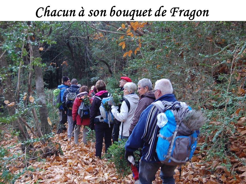 Chacun à son bouquet de Fragon