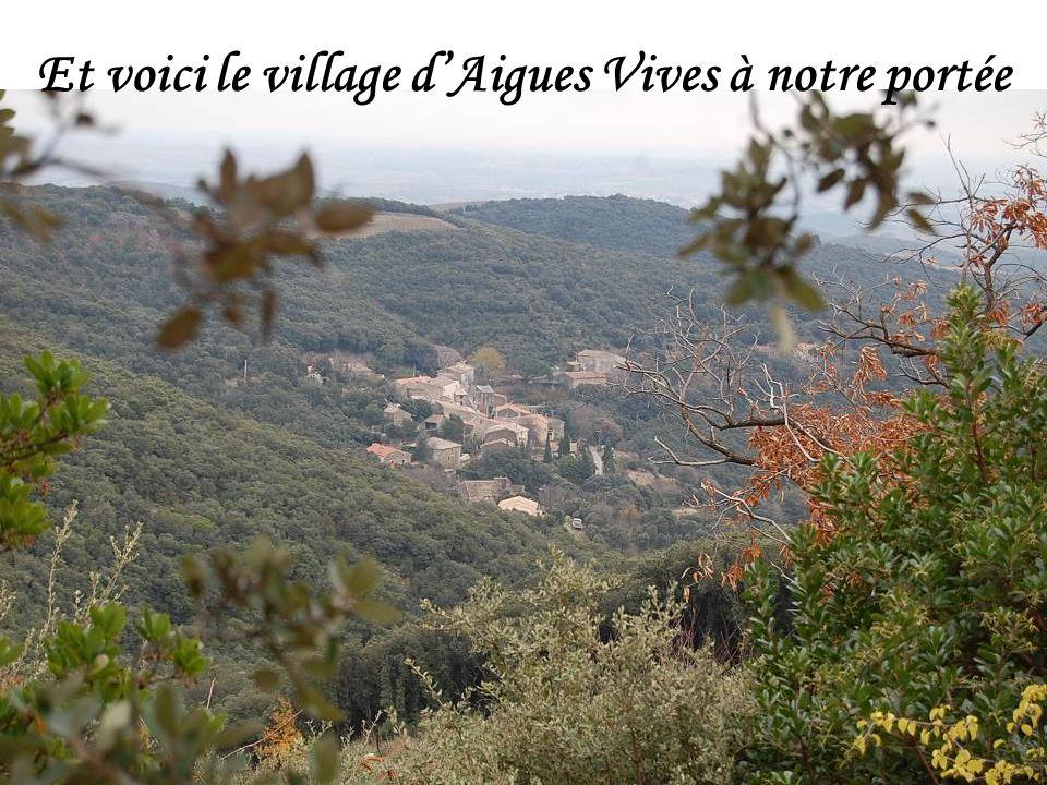 Et voici le village d'Aigues Vives à notre portée