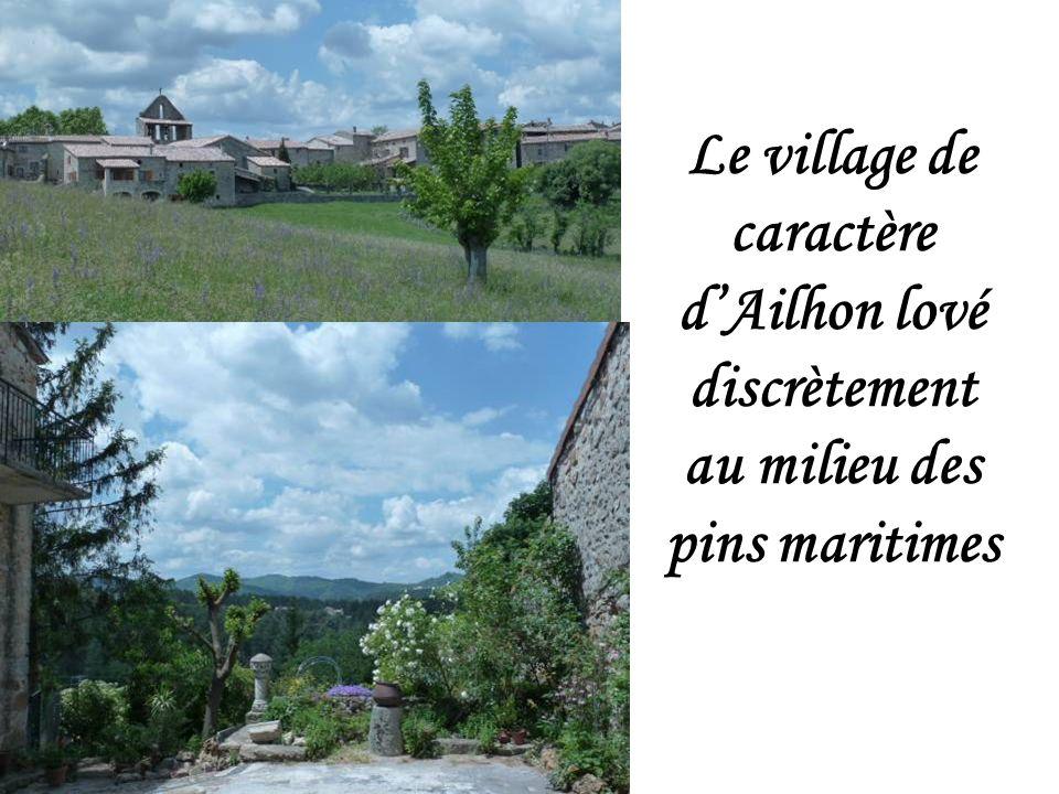 Le village de caractère d'Ailhon lové discrètement au milieu des pins maritimes