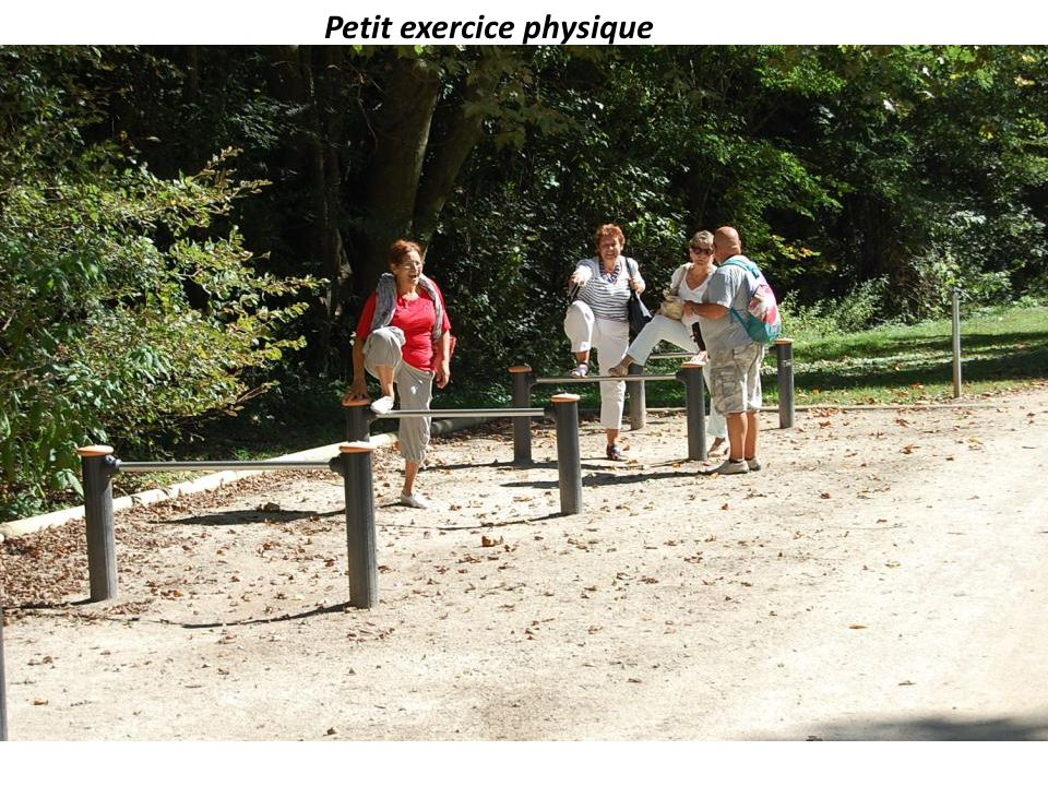 Petit exercice physique