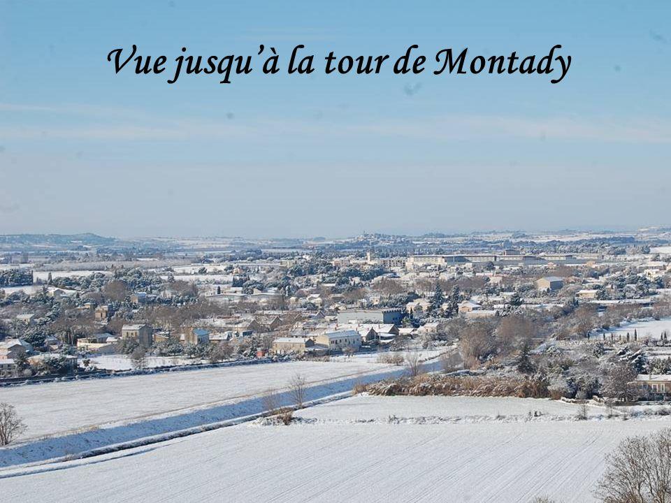 Vue jusqu'à la tour de Montady