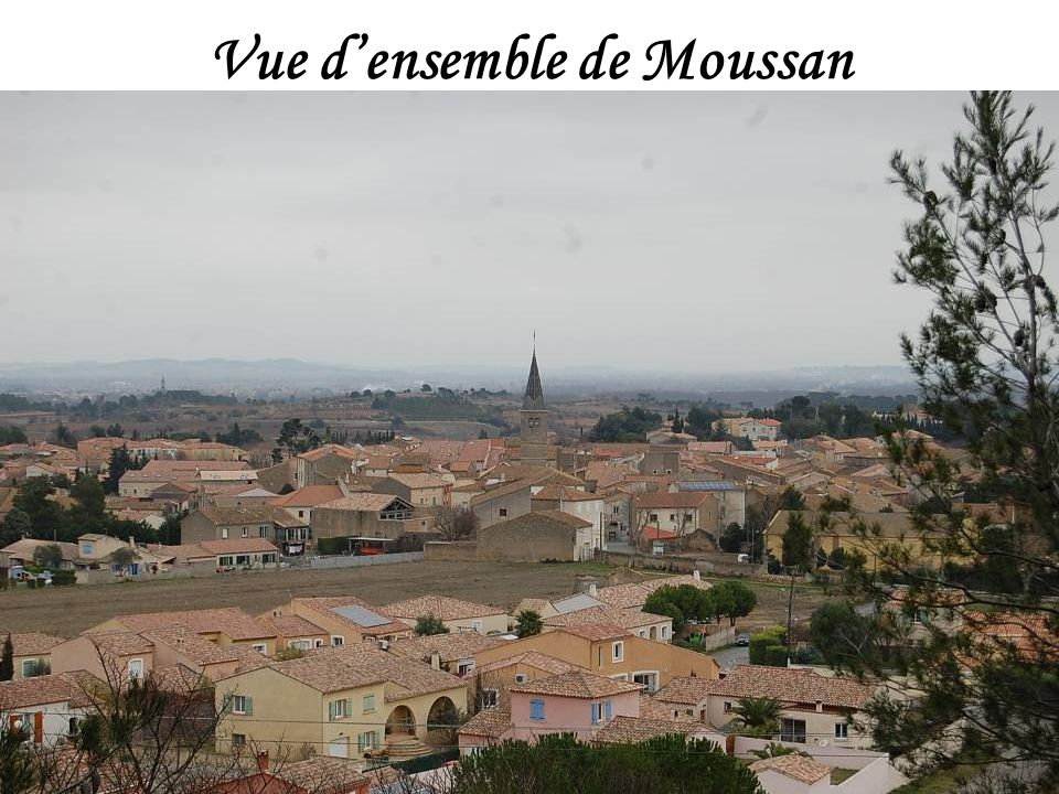 Vue d'ensemble de Moussan