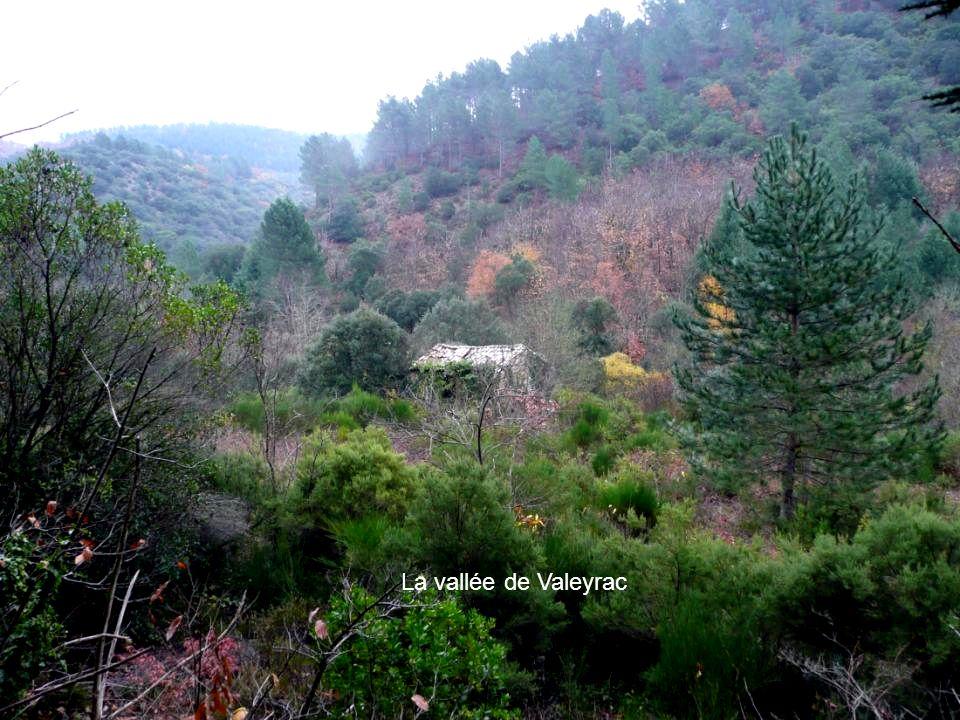 La vallée de Valeyrac