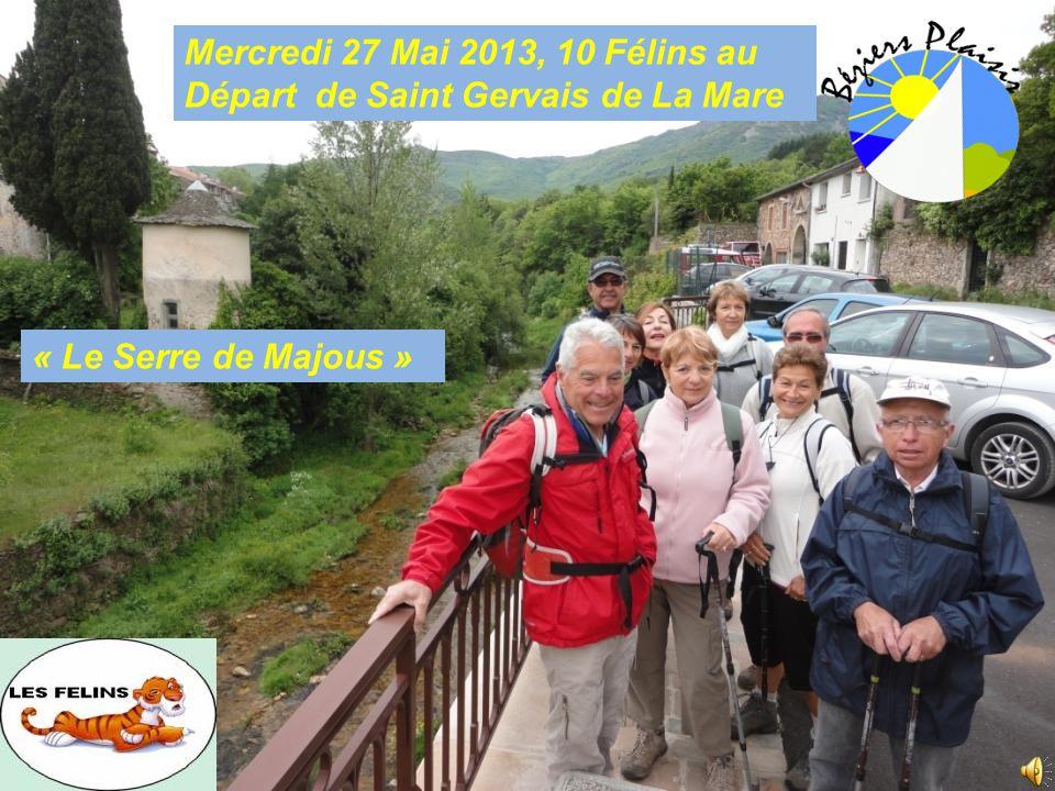 Mercredi 27 Mai 2013, 10 Félins au Départ de Saint Gervais de La Mare « Le Serre de Majous »