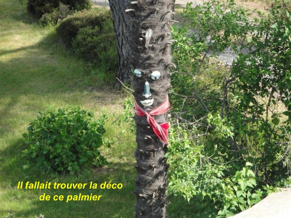 Il fallait trouver la déco de ce palmier