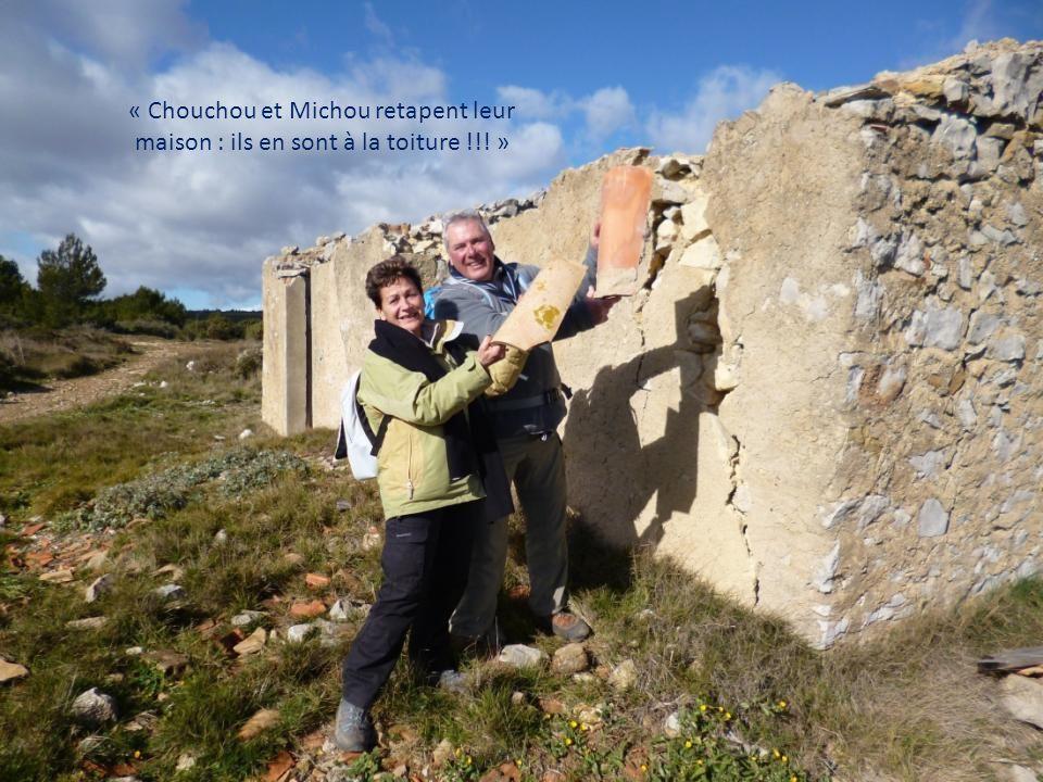 « Chouchou et Michou retapent leur maison : ils en sont à la toiture !!! »